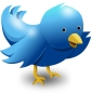 Symbol-of-twitter-vectorcartoon-blue-bird