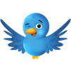 twitter-bird-2-300x300