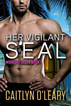 Vigilant Seal 4