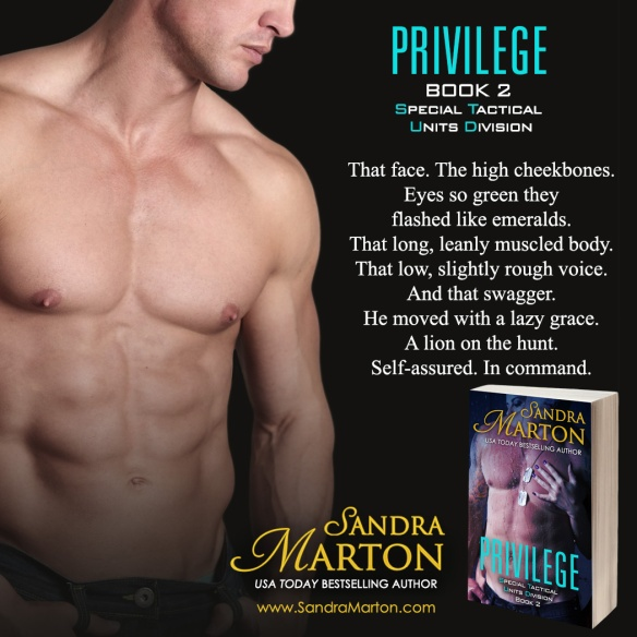 Privilege_Teaser6